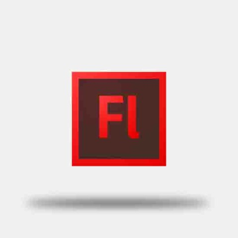Adobe Flash CS4 - Mindpulley